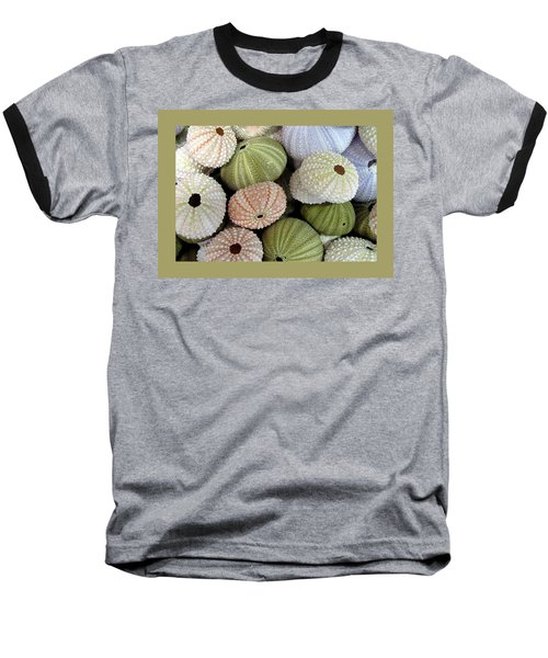 Shells 5 Baseball T-Shirt by Carla Parris