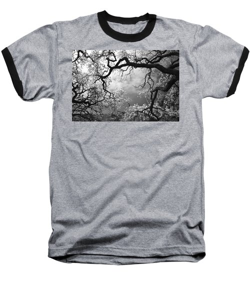 Sheltering Sky Baseball T-Shirt by Laurie Search