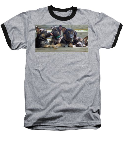 Shepherd Pups 5 Baseball T-Shirt