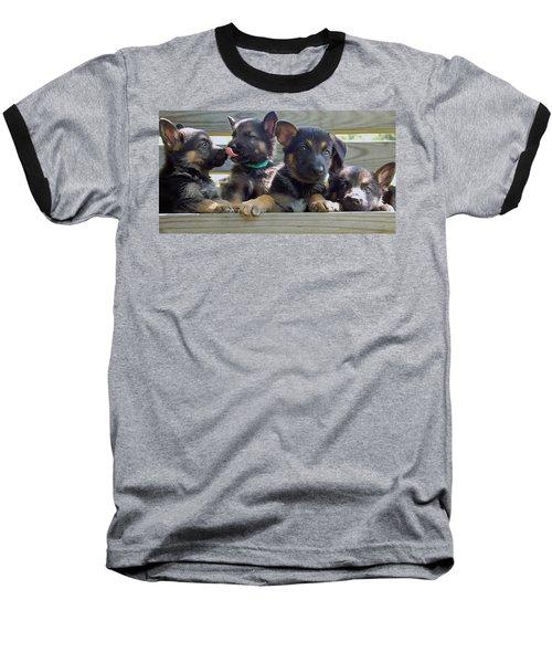 Shepherd Pups 5 Baseball T-Shirt