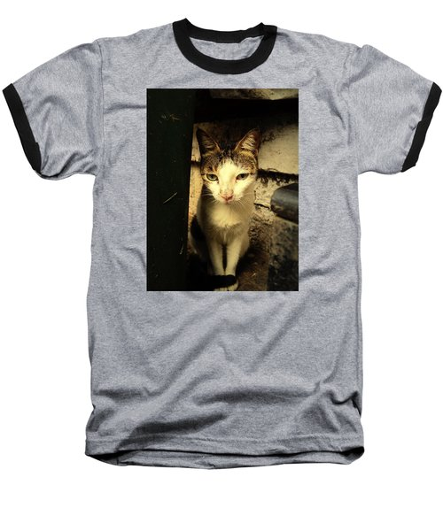 Shy Cat Baseball T-Shirt