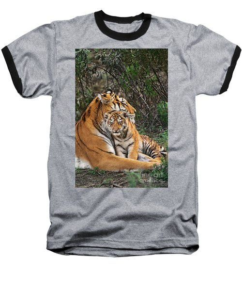Siberian Tiger Mother And Cub Endangered Species Wildlife Rescue Baseball T-Shirt by Dave Welling