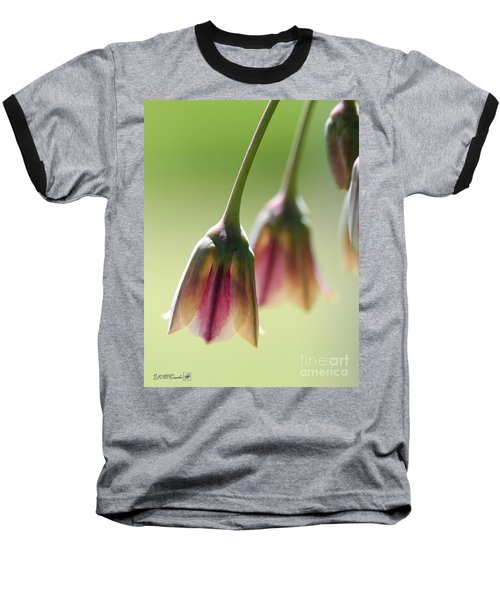 Sicilian Honey Garlic Baseball T-Shirt