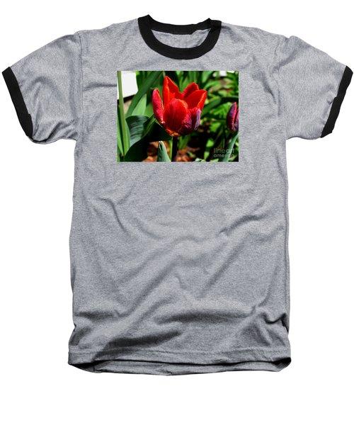 Sign Of Spring Baseball T-Shirt