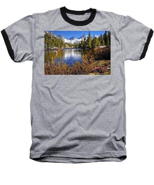 Signs Of Spring Baseball T-Shirt by Lynn Bauer