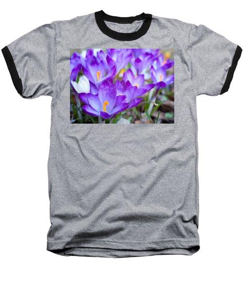 Signs Of Spring Baseball T-Shirt