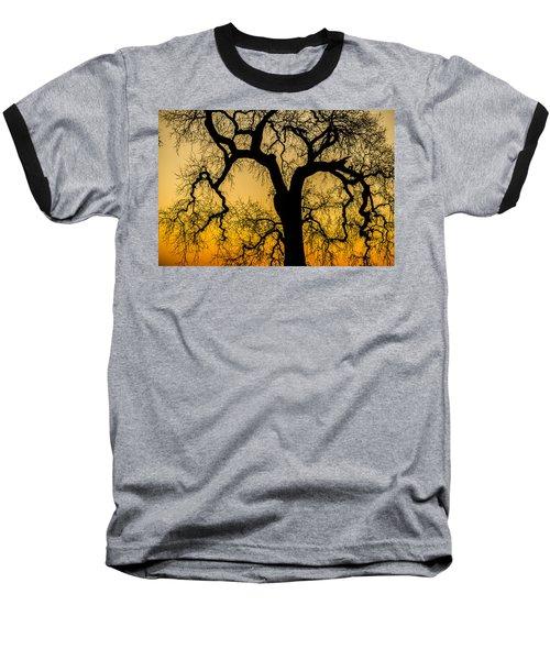 Silhouette Oak Baseball T-Shirt