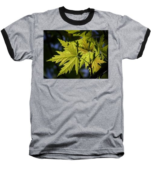 Silver Maple Baseball T-Shirt