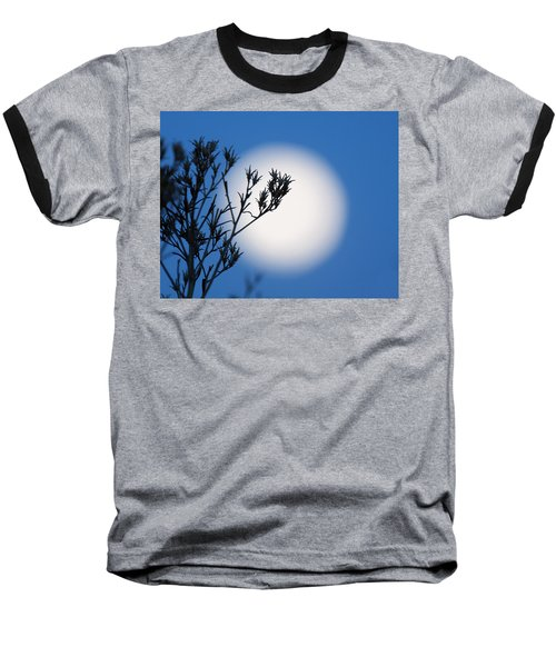 Baseball T-Shirt featuring the photograph Silver Sage by Jim Garrison