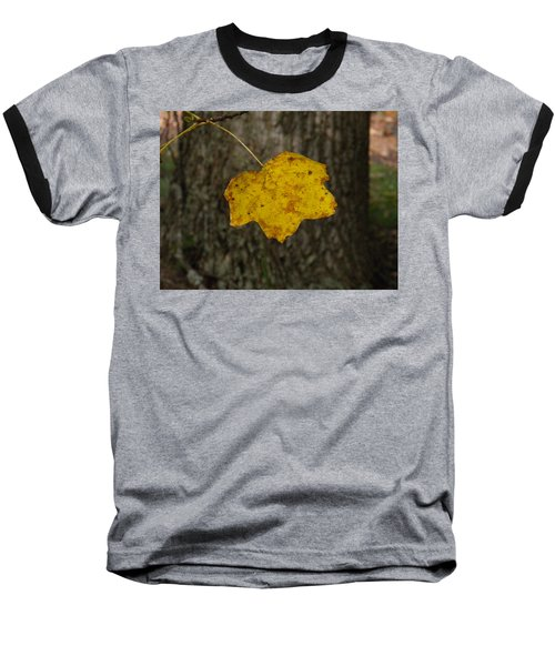 Baseball T-Shirt featuring the photograph Single Poplar Leaf by Nick Kirby
