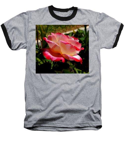 Single Rose Baseball T-Shirt by Pamela Walton