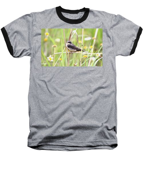 Baseball T-Shirt featuring the photograph Sitin' Pretty by Elizabeth Winter
