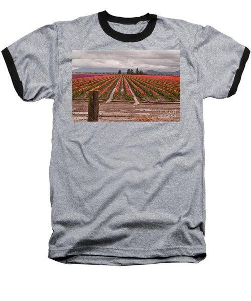 Skagit Valley Tulip Farmlands In Spring Storm Art Prints Baseball T-Shirt by Valerie Garner