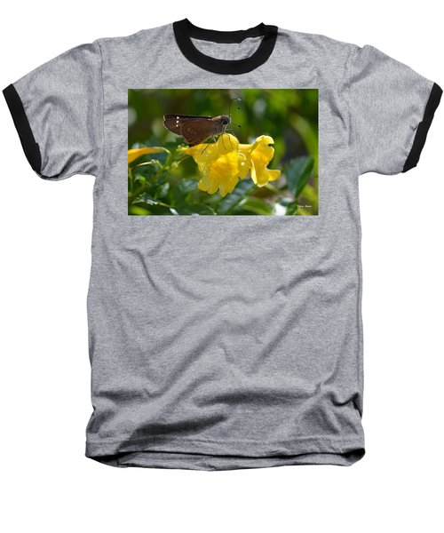Skipper Butterfly 2 Baseball T-Shirt by Debra Martz