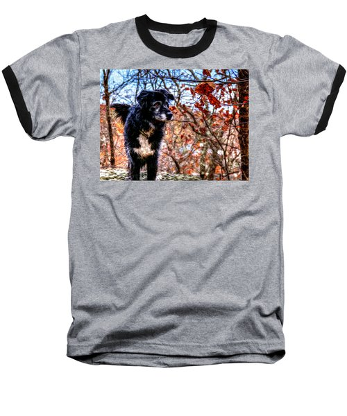 Sky Looking Baseball T-Shirt