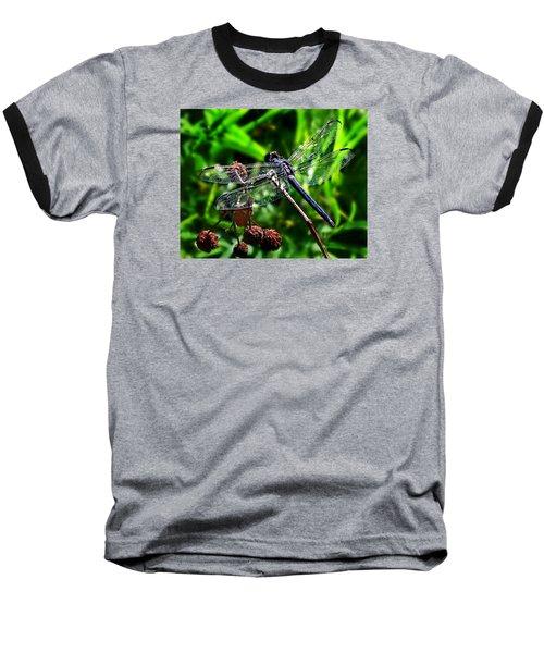 Slaty Skimmer Dragonfly Baseball T-Shirt by William Tanneberger
