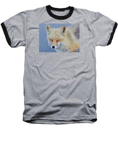 Sleep Walking Baseball T-Shirt by Sami Martin