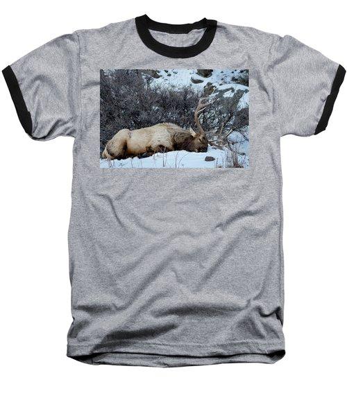 Sleeping Elk Baseball T-Shirt