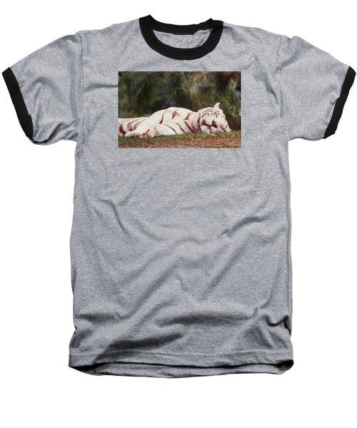 Sleeping White Snow Tiger Baseball T-Shirt by Belinda Lee