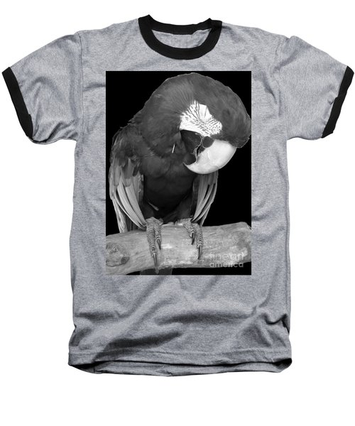 Sleepy Bird  There Is A Nap For That B And W Baseball T-Shirt by Barbie Corbett-Newmin