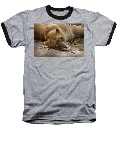 Baseball T-Shirt featuring the photograph Sleepy Lioness by Ann Lauwers