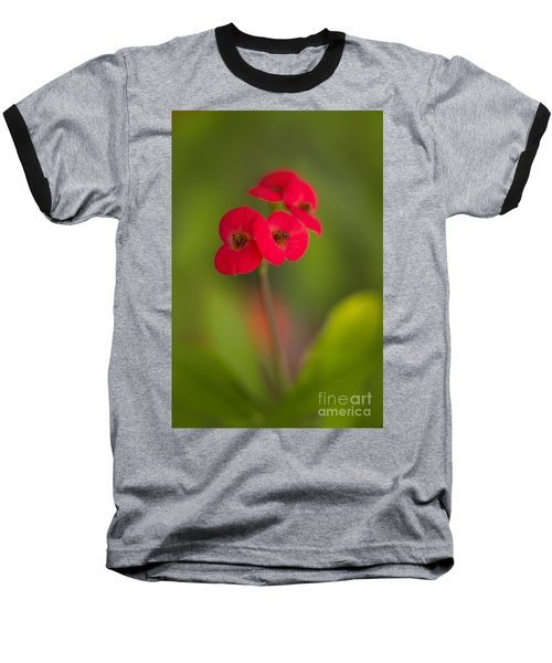 Small Red Flowers With Blurry Background Baseball T-Shirt