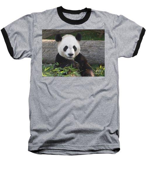 Smiling Giant Panda Baseball T-Shirt