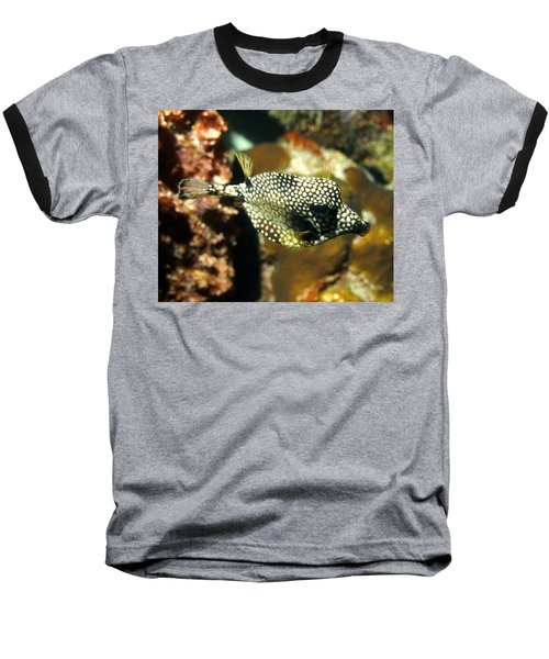 Baseball T-Shirt featuring the photograph Smooth Trunkfish by Amy McDaniel