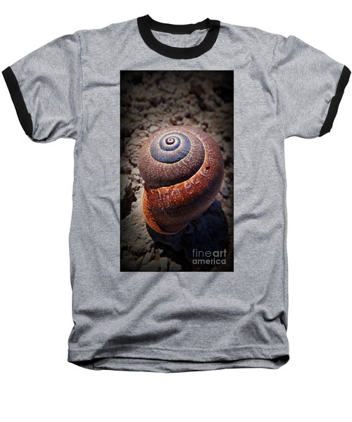 Snail Beauty Baseball T-Shirt by Clare Bevan