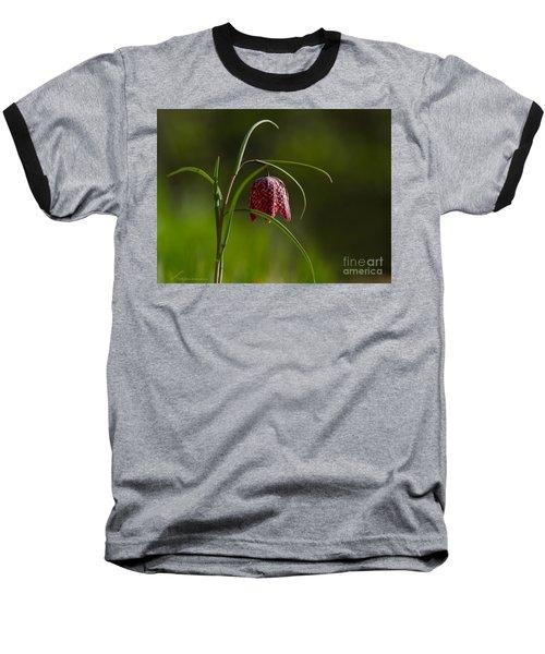 Snake's Head Baseball T-Shirt by Torbjorn Swenelius