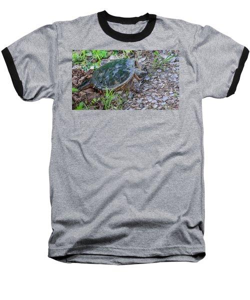 Snapper Eggs Baseball T-Shirt