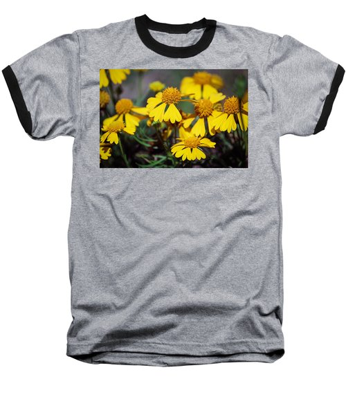 Baseball T-Shirt featuring the photograph Sneezeweed by Ester  Rogers