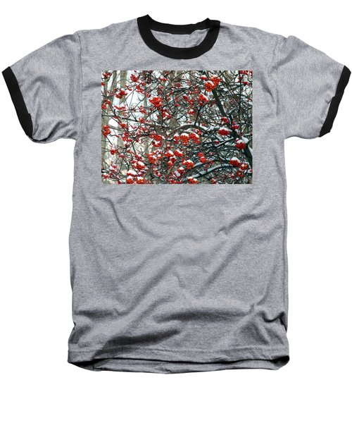 Snow- Capped Mountain Ash Berries Baseball T-Shirt by Will Borden