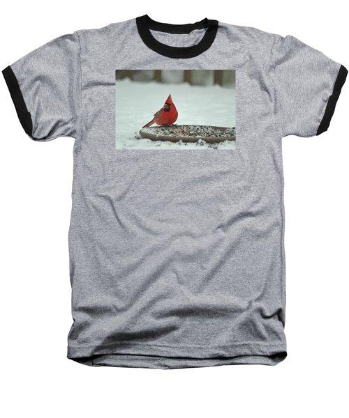 Snow Cardinal Baseball T-Shirt