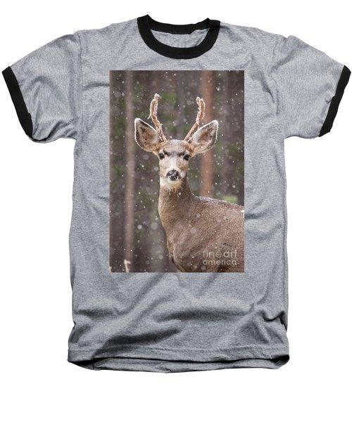 Snow Deer 1 Baseball T-Shirt