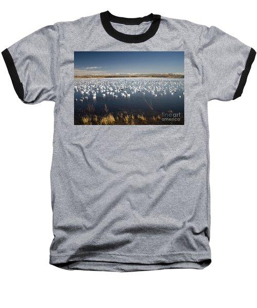 Snow Geese - Bosque Del Apache Baseball T-Shirt