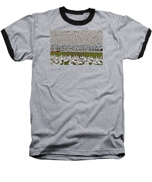 Snow Geese By The Thousands Baseball T-Shirt by Valerie Garner