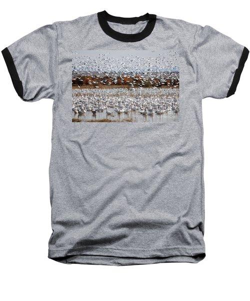 Snow Geese No.4 Baseball T-Shirt