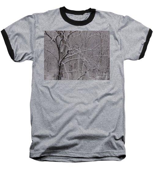 Snow In The Trees At Bulls Island Baseball T-Shirt