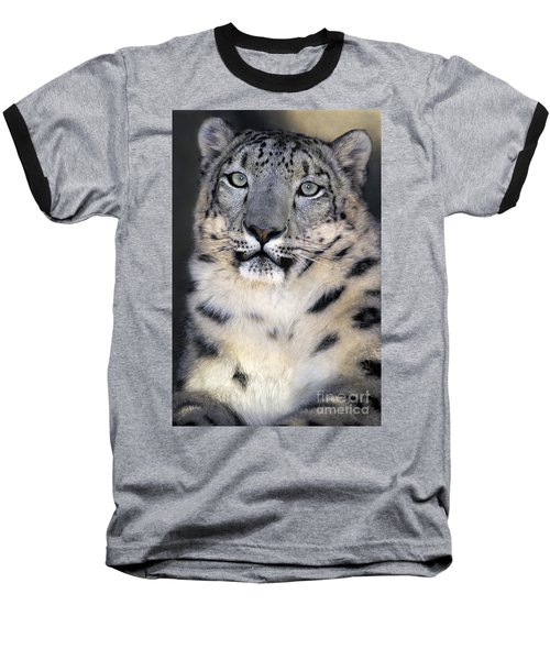 Baseball T-Shirt featuring the photograph Snow Leopard Portrait Endangered Species Wildlife Rescue by Dave Welling