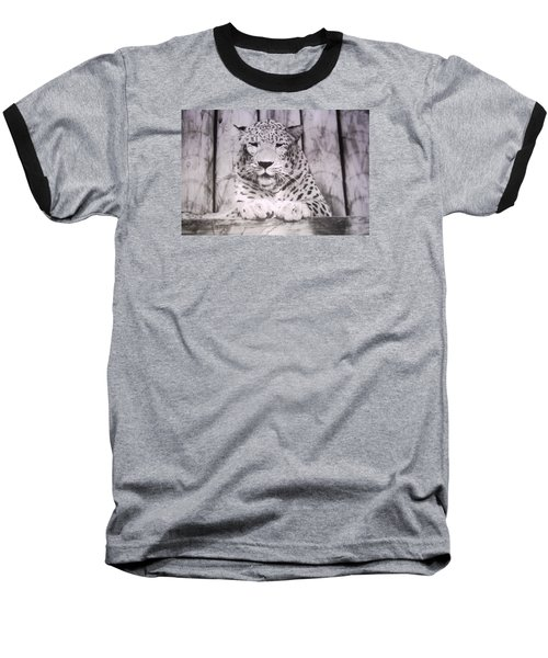 Baseball T-Shirt featuring the photograph White Snow Leopard Chillin by Belinda Lee