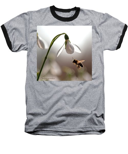 Snowdrops And The Bee Baseball T-Shirt by Torbjorn Swenelius