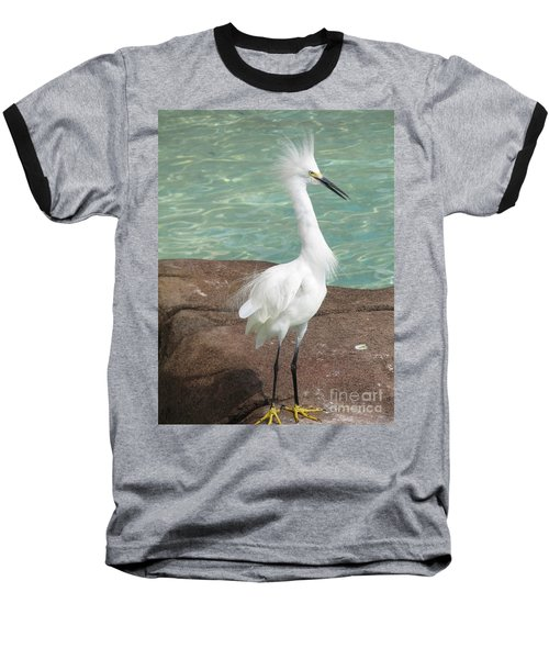 Snowy Egret Baseball T-Shirt by DejaVu Designs