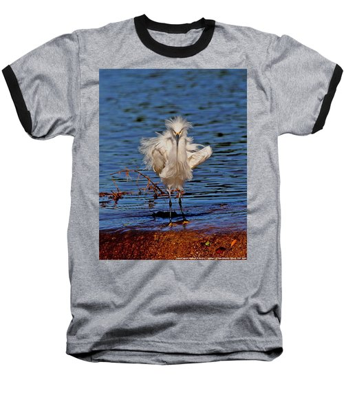 Snowy Egret With Yellow Feet Baseball T-Shirt by Tom Janca