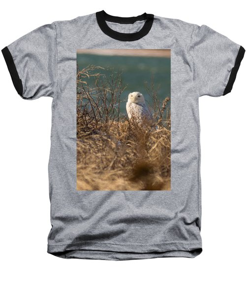 Snowy Owl At The Beach Baseball T-Shirt