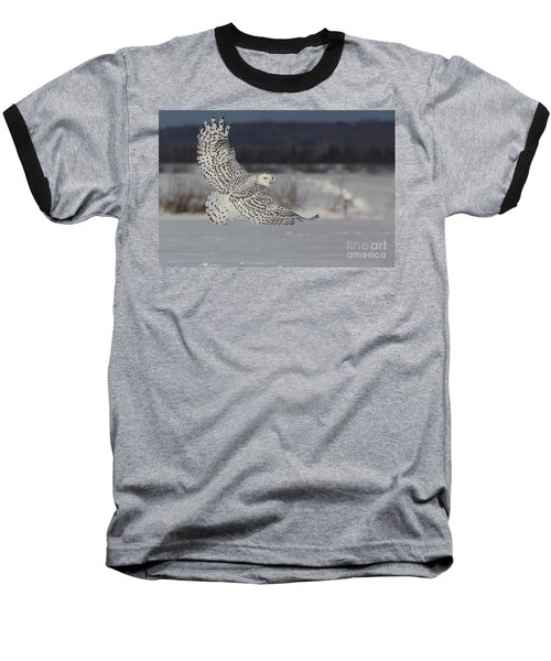 Snowy Owl In Flight Baseball T-Shirt
