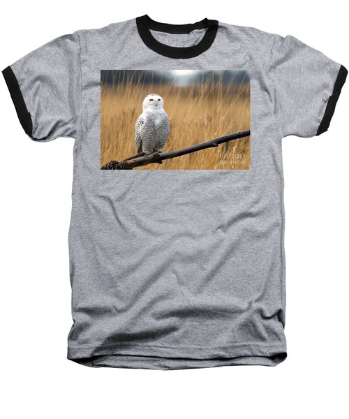 Snowy Owl On Branch Baseball T-Shirt
