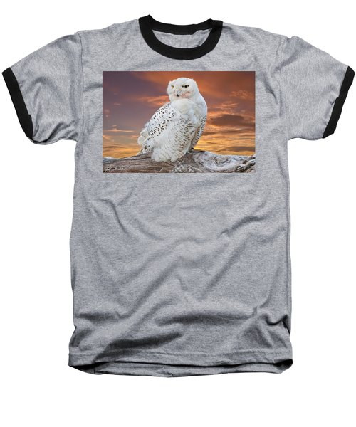 Snowy Owl Perched At Sunset Baseball T-Shirt