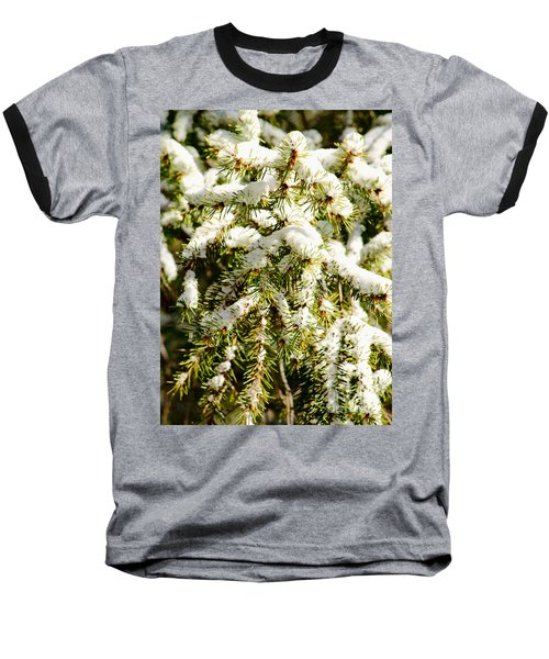 Snowy Pines Baseball T-Shirt