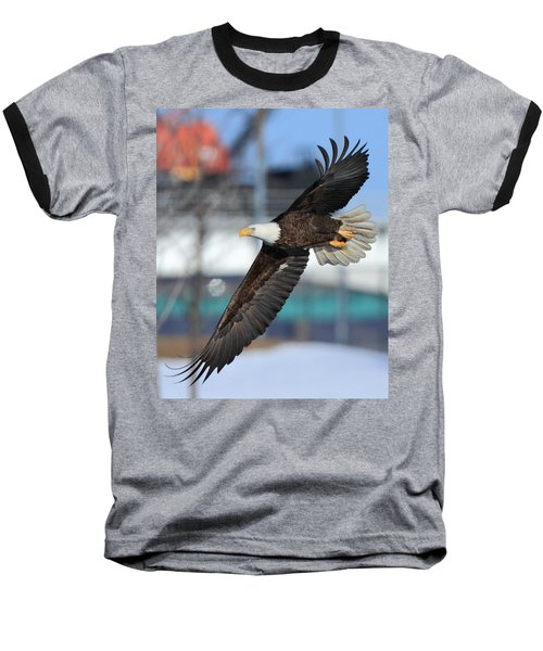 Baseball T-Shirt featuring the photograph Soaring Eagle by Coby Cooper
